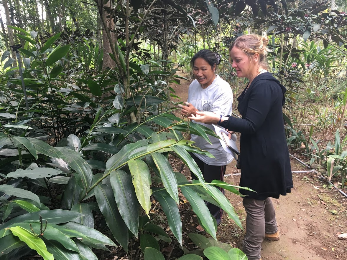 French scholar, Celine Kerfant conduct research on plants fabric in Taidong